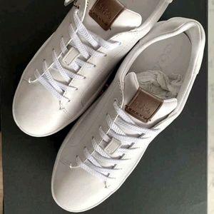 Coach low raise leather sneakers